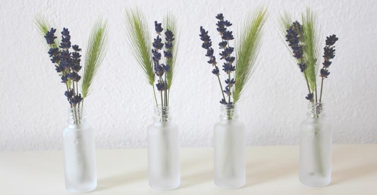 lavender-3397287_1920