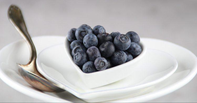 blueberries-4915475_1920